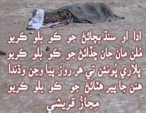 Save Sindh Bhooro Bheel