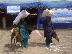 IRC goat distrib